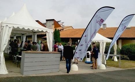 Maïsadour s'affirme dans le vignoble bordelais | Agriculture Aquitaine | Scoop.it