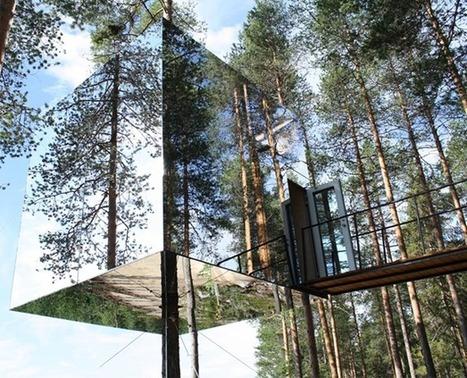 Las 5 mejores casas colgadas de los árboles del mundo   Conciencia Eco   Positivisme ambiental   Scoop.it