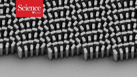 Shrinking microscope lenses | science and tech | Scoop.it
