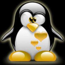 Posicionamiento Web: mi amigo Google pingüino 2.0 : Consejos SEO - PosicionaWeb.es   Curso de Posicionamiento Web 1   Scoop.it