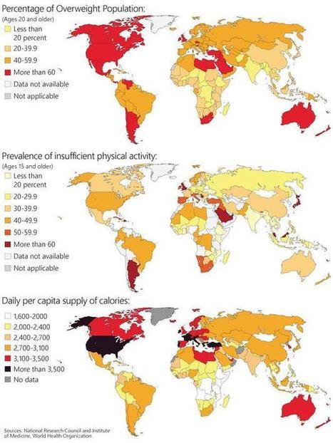 Global obesity epidemic - MSN News | Healthy for Life | Scoop.it