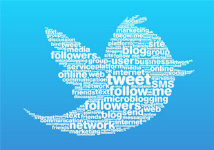 5 Effective Steps to Help You Build a Strong Twitter Presence | MarketingHits | Scoop.it