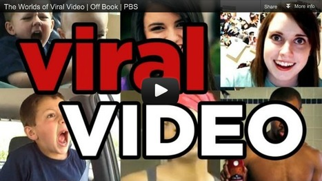 Top 5 Non-Branded Viral Videos of the Week Ending December 8   INSIGHTS4.me Videos   Scoop.it