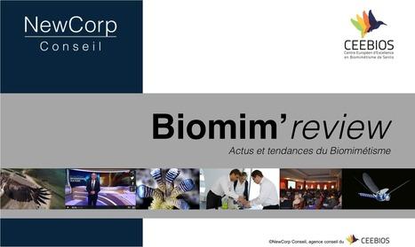 Le Biomimétisme | CEEBIOS | Ressources pour la Technologie au College | Scoop.it