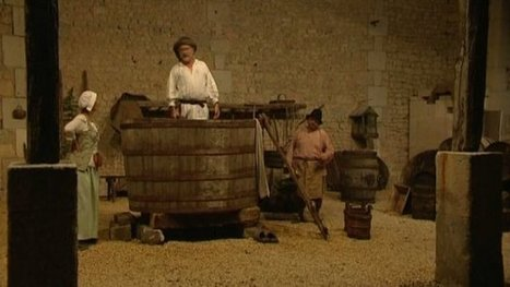 Nuit blanche et histoires de vins - vignoble de Cognac   Le Cognac et son vignoble   Scoop.it
