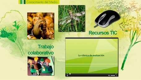 Integrar las TIC en la práctica docente | Blog de INTEF | Educacion, ecologia y TIC | Scoop.it