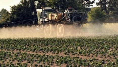 Le premier groupe coopératif agricole français se lance dans la production de pesticides | Abeilles, intoxications et informations | Scoop.it