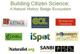 @Ignatia Webs: On open badges and informal assessment | MOOCs and OERs | Scoop.it
