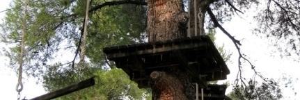Tourisme Vert. Dormir dans une cabane | community farm | Scoop.it