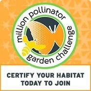 How to Attract Butterflies to Your Garden - National Wildlife Federation | Butterfly Garden PBL | Scoop.it