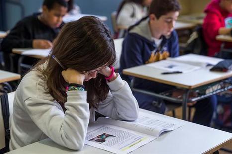 Ocho de cada diez profesores de España se muestran en contra de las reválidas de la LOMCE, según un estudio | La Mejor Educación Pública | Scoop.it