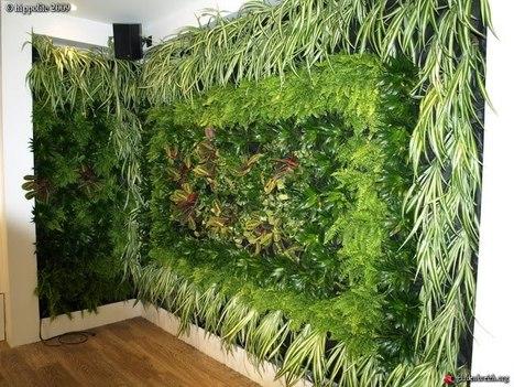 Azoteas verdes, en blanco y negro - arquitectura - obrasweb.com | Cultivos Hidropónicos | Scoop.it