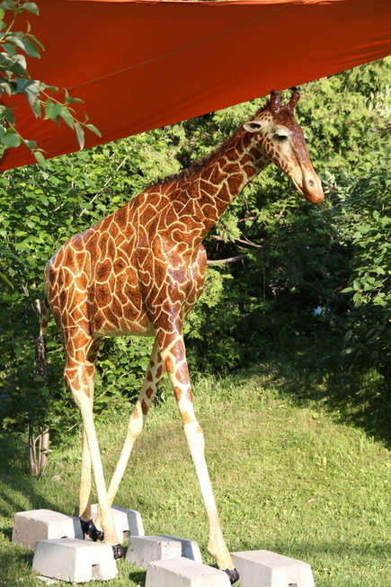 How Michele Made Her Paper Mache Giraffe | Creative PaperMache | Scoop.it