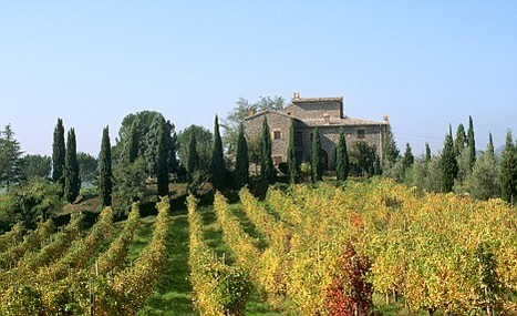 A (Metaphorical) Tour Through Italy's Vineyards | Wines and People | Scoop.it