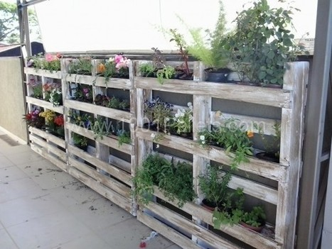 Pallets wall in my garden   Gardening   Scoop.it