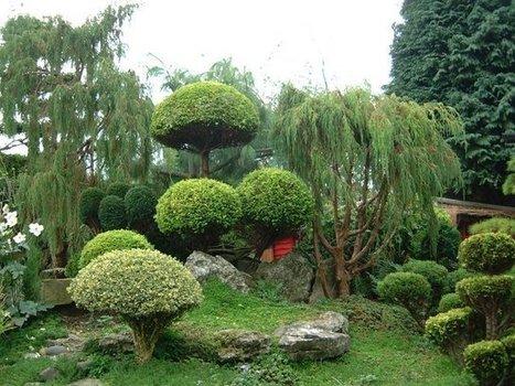 Famous Japanese Garden Designs at Japan Blog | Mangialafoglia | Scoop.it