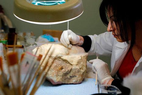 Creating a museum | Αρχαιολογία Online | Archaeologia Online | Scoop.it