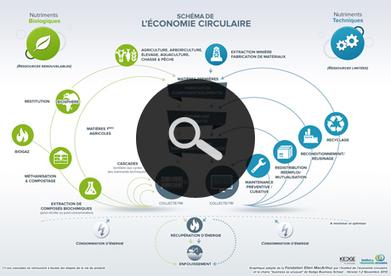 Economie sociale ~ Econosoc ~ Le carrefour de l'économie sociale | Du système D au collaboratif | Scoop.it
