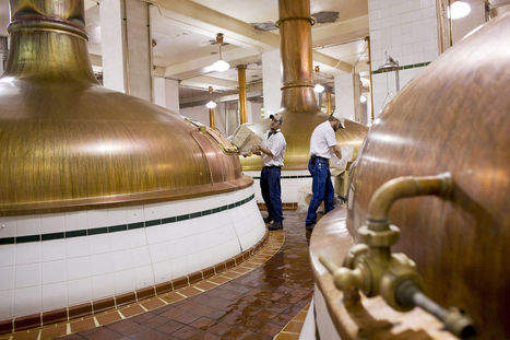 As Brewing Giants Push Craft Beer, Bud and Miller Suffer | Artisanal Brewing | Scoop.it