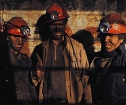 Coal oversupply to cap prices to 5-year-low | Sustain Our Earth | Scoop.it