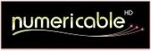 Vivendi : Numericable détaillera bientôt les modalités de son entrée en Bourse   Free Mobile, Orange, SFR et Bouygues Télécom, etc.   Scoop.it