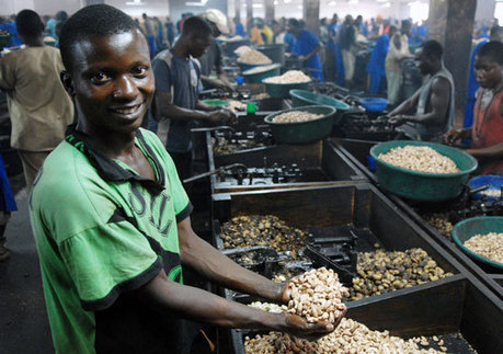 Catalyzing a New Generation of 'Agri-preneurs' in Africa | Agricultural Research | Scoop.it
