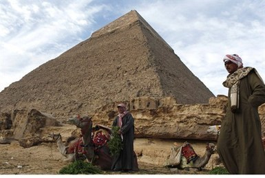 Egypt Struck by Swarm of Locusts Ahead of Passover | Quite Interesting News | Scoop.it