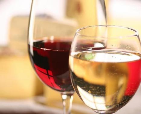 Le vin dans tous ses états. | agro-media.fr | agroalim_distrib | Scoop.it