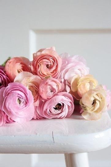 Oh my RANUNCULAS!   Fashion, Beauty & Flowers   Scoop.it