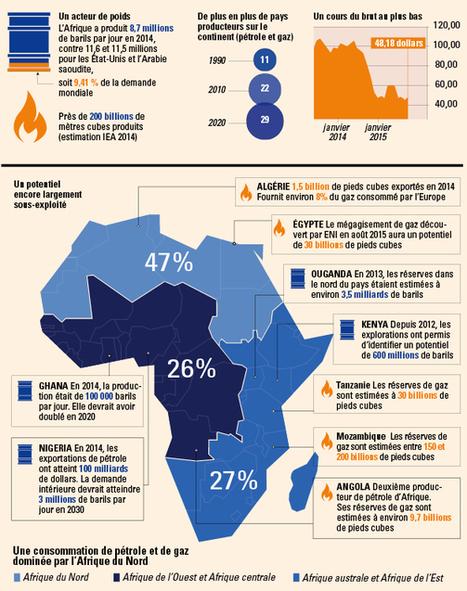Infographie : ce qu'il faut savoir sur les hydrocarbures en Afrique - JeuneAfrique.com | Sustainable Development | Scoop.it