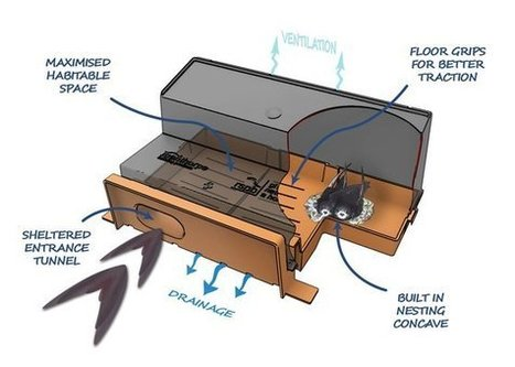 #RSPB helps develop #Brick that gives swifts a home   #Construction #Environment   Glazing Architecture Construction   Scoop.it