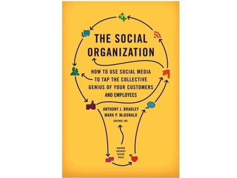 "Welcome to ""The Social Organization"" 
