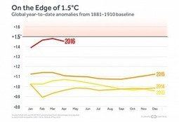 May marks one more record hot month for the world | Oven Fresh | Scoop.it