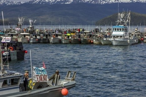 Alaska Fishermen Organize Flotilla to Protest Navy's Training Plans | All about water, the oceans, environmental issues | Scoop.it