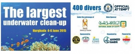 World Record Scuba Diver Organizing Biggest Underwater Cleanup – DeeperBlue.com | All about water, the oceans, environmental issues | Scoop.it