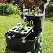 AquacultureHub, In an attempt to promote and improve the economics, safety and security of our aquaponic systems we started developing efficient airlift-pumping technology that will replace both wa...   Aquaponics World View   Scoop.it
