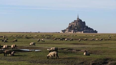La France toujours préférée des touristes étrangers | Le tourisme autrement | Scoop.it