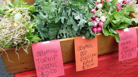 Are Organic Vegetables More Nutritious After All? | Food & Sustainability | Scoop.it