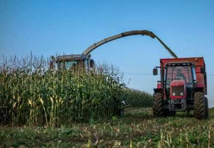 Most EU nations seek to bar GM crops | Inequality, Poverty, and Corruption: Effects and Solutions | Scoop.it