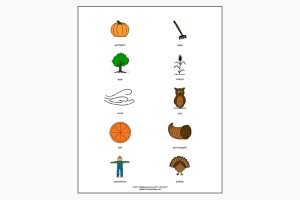Thanksgiving Picture Cards   Speech-Language Pathology   Scoop.it