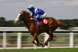 Online Betting on Horse Racing in Singapore | Online Sports Betting Account in Indonesia | Scoop.it