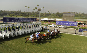 USA Breeders' Cup officials pushing for raceday medication ban | Horse Racing News | Scoop.it