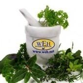 Wonderful Herbs | medical plants | Scoop.it