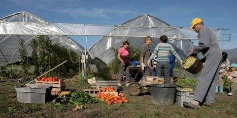 Pau : la Semaine du développement durable a commencé | Agriculture en Pyrénées-Atlantiques | Scoop.it
