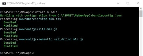Bundling and Minification in ASP.NET Core | Nova Tech Consulting S.r.l. | Scoop.it