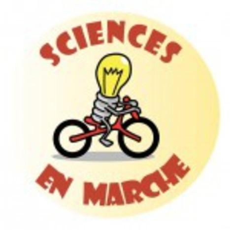 Recherche publique : la situation kafkaienne des laboratoires | Enseignement Supérieur et Recherche en France | Scoop.it
