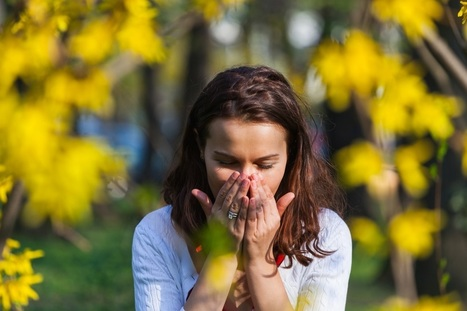 Urgent Care Tukwila: Fighting Off Allergies from Plants and Animals | US HealthWorks Tukwila | Scoop.it