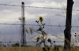 U.S. has huge oils reserves so let's expand to new export markets   Deseret News   Shale Oil   Scoop.it