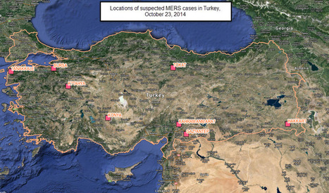 Turkey - 12 suspected coronavirus MERS cases being investigated - all are pilgrims returning from Hajj Saudi Arabia - FluTrackers | MERS-CoV | Scoop.it