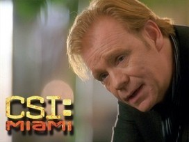Download CSI: Miami or Watch It Online Without Any Trouble! | Watch Movies and TV Shows Free in HD | Scoop.it